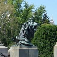 Ruse Bulgaria,the center-lion,